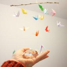 paxariños a voar